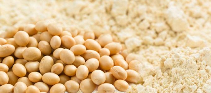 Kasnor, proteína, vegetal, vegano, vegetariano, soja, arroz, guisante, spirulina