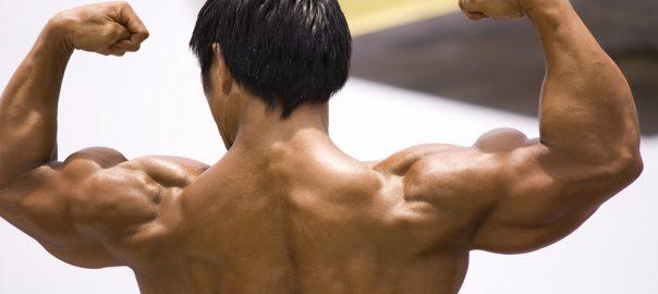 Kasnor, suplementos deportivos, precursores hormonales, distribuidor, hormonas, Testosterona, Hormona del crecimiento, GH, Insulina, beneficios, hipertrofia